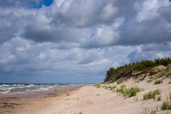 Baltic sea shore in Latvia Royalty Free Stock Images