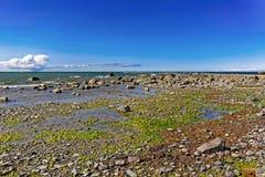 Baltic sea shore Stock Photos