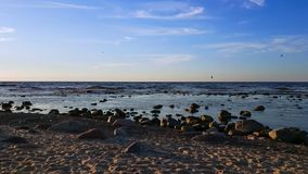 Baltic Sea shore at sunny summer day time. Baltic Sea shore at sunny day time stock video