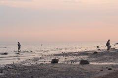 Baltic sea shore at sunset. Royalty Free Stock Photos