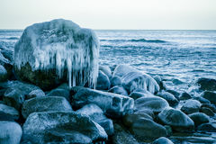 Baltic sea shore at winter Stock Images