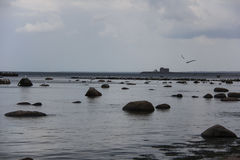 Baltic Sea with stones, sea gulls and a fishing boat Stock Photos