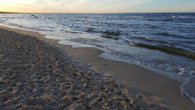 The Baltic Sea at sunset 03 Stock Images