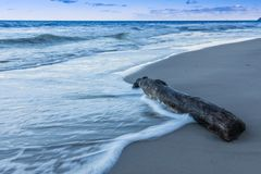 Baltic sea with waves and old log on the beach stock images