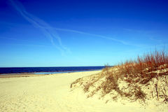 Baltic sea wild beach Stock Photo