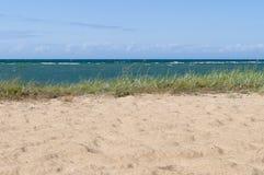 Baltic sea wild beach landscape Royalty Free Stock Photography