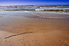 Baltic sea in windy day. Royalty Free Stock Photos
