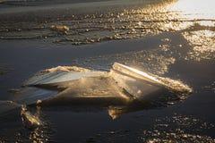 Baltic Sea Winter Stock Photos