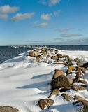 At the Baltic sea. Stock Photography