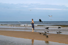 Baltic sea,   woman is walking along the beach and feeding white Royalty Free Stock Photo