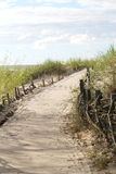 Baltic sea. Wooden way to the Baltic sea royalty free stock images