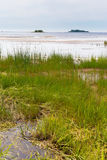 Baltic seaside landscape in summer. Finland Royalty Free Stock Image