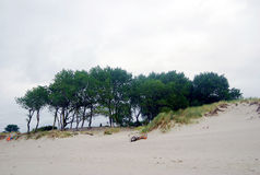 Baltic spit sirene nature scenery Royalty Free Stock Image