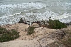 baltic wybrzeża burza Zdjęcie Stock
