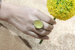 Baltica mber & beewax Ring Stock Photos