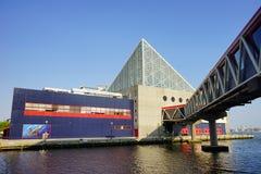 Baltimore inner Harbor aquarium. Baltimore inner Harbor scenic area and downtown: aquarium royalty free stock photography