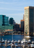 Baltimore marina and skyline Stock Photography