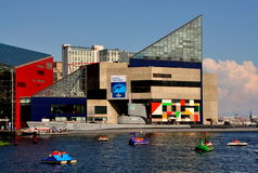 Baltimore, MD: The National Aquarium at Inner Harb. People in pedal boats dot the Inner Harbor waters in front of the National Aquarium in Baltimore, Maryland Royalty Free Stock Photo
