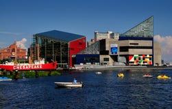 Baltimore medicine doktor: Nationellt akvarium på den inre hamnen Royaltyfri Foto