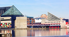 Baltimore National Aquarium. Reflections of aquarium buildings in the water covered with a crust of ice Royalty Free Stock Photography
