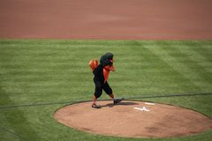 Baltimore Oriole mascot Stock Photo