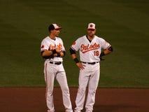 Baltimore Orioles fotografia de stock royalty free