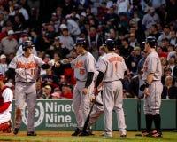 Baltimore Orioles Royaltyfri Bild