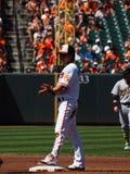 Baltimore Orioles Brian Roberts fotografia de stock royalty free