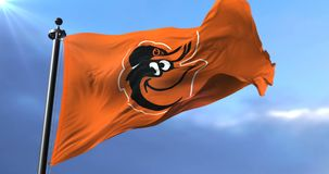 Baltimore Orioles flag, american professional baseball team, waving - loop. Flag of the team of the Baltimore Orioles, american professional baseball team stock video footage