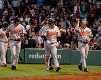 Baltimore Orioles Stock Photography