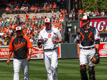Baltimore Orioles Royalty Free Stock Photography