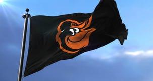Baltimore Orioles team flag, american professional baseball team, waving - loop. Flag of the team of the Baltimore Orioles, american professional baseball team stock footage