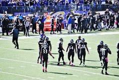 Baltimore Ravens Football. Baltimore Ravens October 2014 defense during break Royalty Free Stock Images