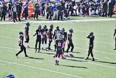 Baltimore Ravens Football. Baltimore Ravens October 2014 defense during break Royalty Free Stock Photography