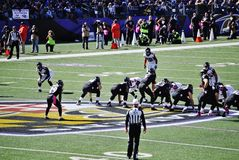Baltimore Ravens Football. Baltimore Ravens October 2014 Offense on the field play in motion Stock Photos