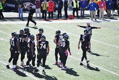 Baltimore Ravens Football. Baltimore Ravens October 2014 Offense on the field with referee Stock Photo