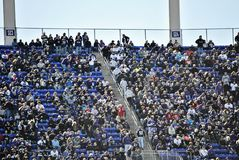 Baltimore Ravens Football Stadium Fans Stock Photo