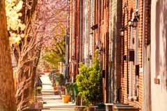 Baltimore streets with brick houses in spring, USA stock photos