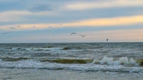 Baltisch strand in palanga Royalty-vrije Stock Afbeelding