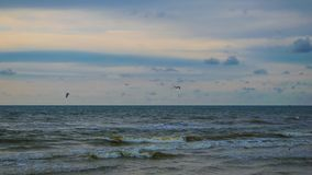 Baltisch strand in palanga Stock Foto's