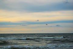 Baltisch strand in palanga Royalty-vrije Stock Afbeeldingen