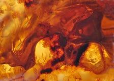 Baltische amber, harssegmenten Stock Afbeeldingen
