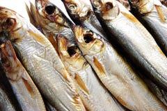 Baltische geräucherte Fische Lizenzfreie Stockbilder
