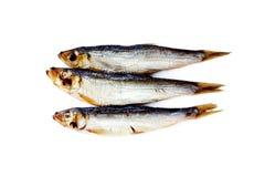 Baltische geräucherte Fische lokalisiert auf Weiß Lizenzfreie Stockbilder