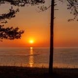 Baltischer meeres- Sonnenaufgang des frühen Morgens über dem Meer Lizenzfreie Stockfotografie