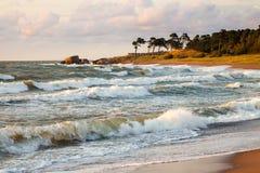 Baltisches Ufer Stockfotos
