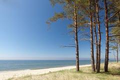 Baltisches Ufer szenisch Stockfotografie