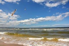 baltisk kust Royaltyfria Bilder
