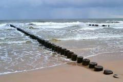 baltisk seacoast Arkivfoto