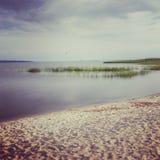 baltiska estonia nära havssomethere tallinn Royaltyfri Fotografi